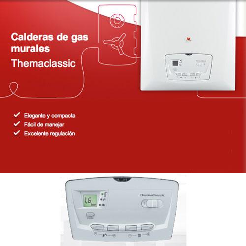 Caldera a gas propano saunier duval themaclassic 25kw for Calderas de gas propano