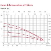 bomba-espa-neptun-fl60-curvas-funcionamiento